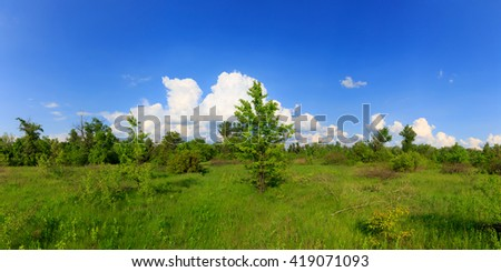green spring meadow panorama at nice day - stock photo
