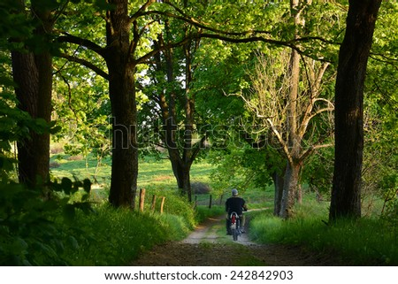 green spring road with old trees and man on motorcycle - stock photo