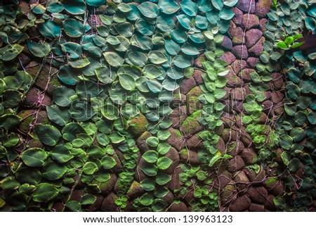 Green stone wall - stock photo
