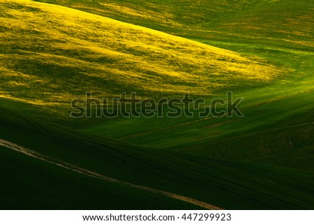 Green summer meadow landscape. Summer in the fields. Idyllic view of hilly farmland in Tuscany in beautiful morning light, Italy. Landscape in the Italy. Morning light in the field, hilly landscape. - stock photo