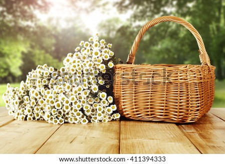 green sunny day in park and empty basket and white flowers  - stock photo