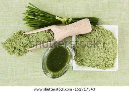 Green superfood background. Wheatgrass ground, barley grass blades and green juice on green background. Healthy eating and detox. - stock photo