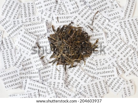Green tea with a background of a tore DNA sequence - stock photo