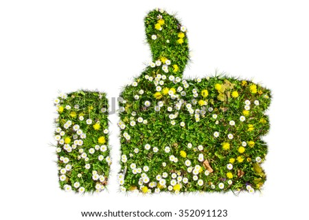 Green thump - natural flower field in hand shape  - stock photo