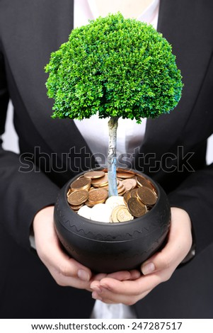Green tree growing in ceramic pot full of coins, pot in hands - stock photo
