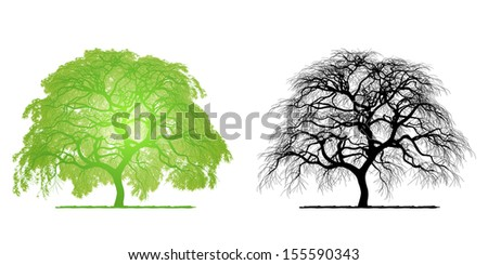 Green tree isolated, from vector file Image ID: 150719630 - stock photo