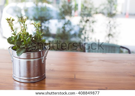 Green tree or plant in silver metal pots on wooden table. Background is copy space - stock photo