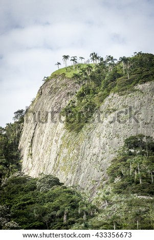 Green tropic forest on the hill - stock photo