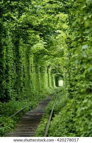 Green tunner in the forest. Love place. - stock photo