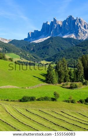 Green valley field hay, Val di Funes, Dolomiti Mountains, Italy - stock photo