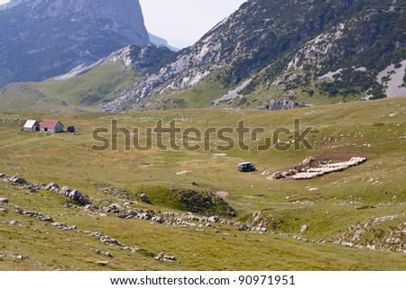 Green valley in Durmitor mountain - Montenegro. - stock photo