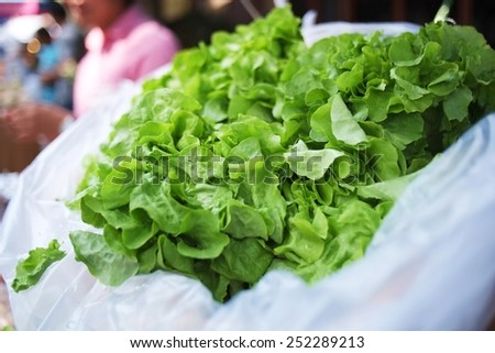 Green vegetables , a healthy eating concept of fresh garden produce organically grown  - stock photo