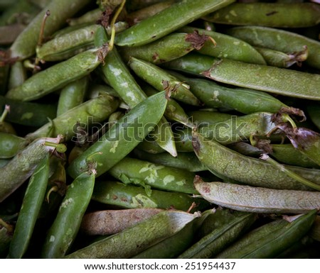 green vegetables in market - stock photo