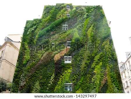 Green wall on exterior of  building - stock photo