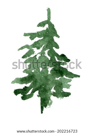 green watercolor spruce on white background - stock photo