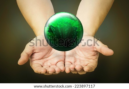 Green  world in hands  - stock photo