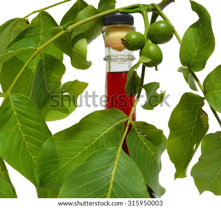 Green young walnuts in liqueur bottle - stock photo