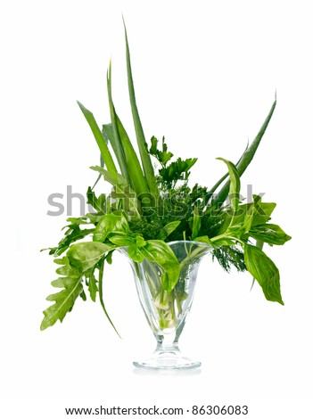Greenery herbs assortment - stock photo