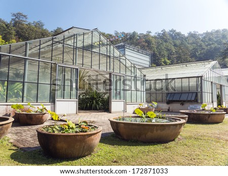 Greenhouse in Queen Sirikit Botanical Gardens, Chiang Mai Province. - stock photo