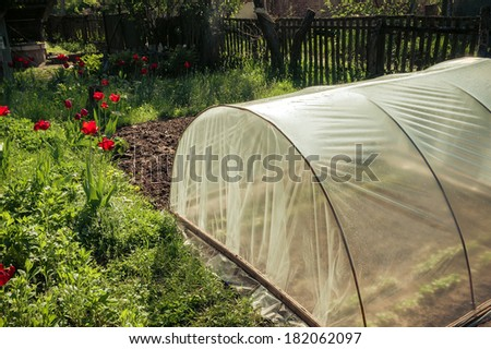 greenhouse in the garden summer - stock photo