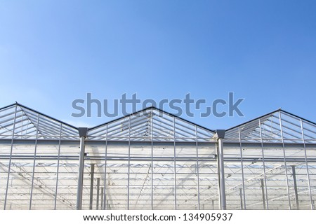 Greenhouse with blue sky - stock photo