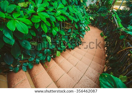Greenhouse With Flowers And Plants. Temperate House Conservatory, Botanical Garden. - stock photo