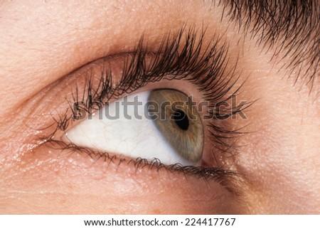 Grey/green human eye macro - stock photo