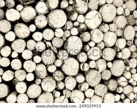 grey wooden background - stock photo