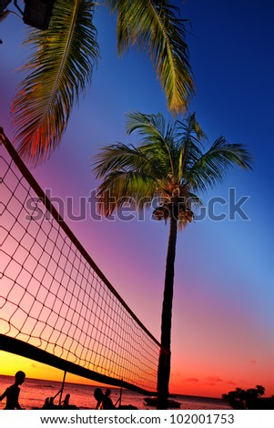 Grid for beach volleyball between palm trees at a sunset and sea background - stock photo
