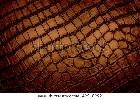 gridded brown background - stock photo
