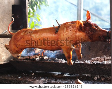 grilled pig on the fire         - stock photo