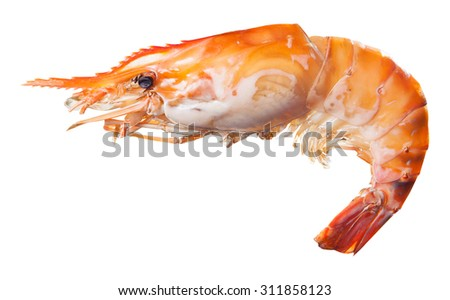 Grilled river shrimp isolated - stock photo