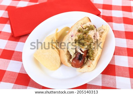 Grilled sausage with spicy mustard on bun covered with coleslaw and pickle relish.  Served with chips on white platter against red plaid tablecloth background.  Selective Focus, shallow DOF - stock photo