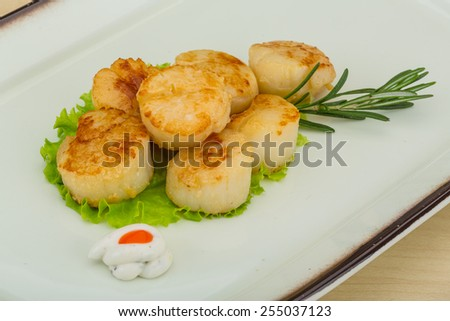 Grilled scallops in the bowl with herbs - stock photo