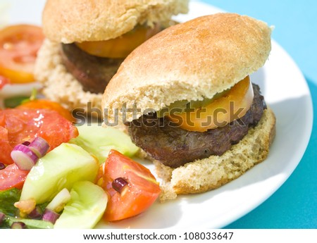 Grilled Slider Hamburgers served with a delicious fresh vegetable salad. - stock photo