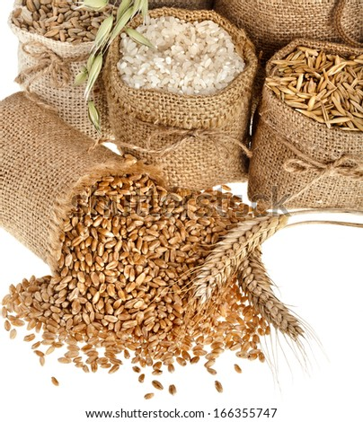 groats seed meal and grains in bags close up  isolated on a white background  - stock photo