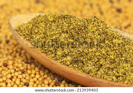 Ground Mustard on spoon with seeds - stock photo