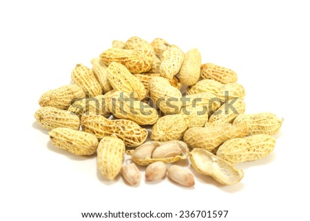 Ground nuts isolated on a white background. - stock photo
