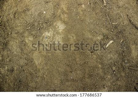 Ground textured surface background under bright sunlight - stock photo