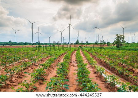 Group Large wind turbines in Thailand  - stock photo