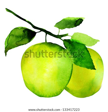 group of apples, watercolor painting on white background - stock photo