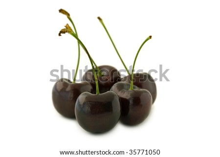 Group of dark red cherries, with stalks. Isolated on white background, with shadow. - stock photo
