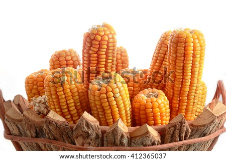 group of dried corns on cobs in the wooden basket - stock photo