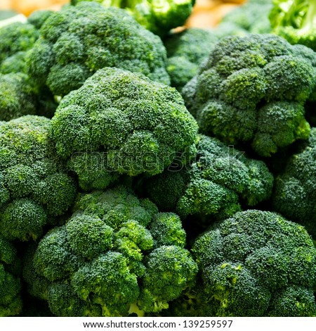 Group of fresh broccoli close up. - stock photo