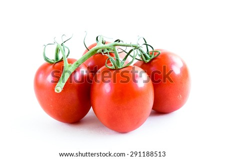 Group of fresh ripe Roma Tomatoes isolated on white background. Close-up view of Roma tomatoes, also known as Italian tomatoes or Italian plum tomatoes. - stock photo