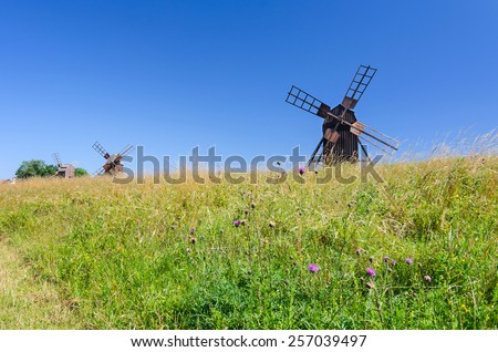Group of historical windmills on Oland island - stock photo
