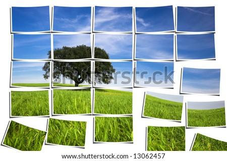 group of multiple filmstrips composing a landscape scene - stock photo