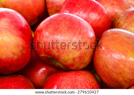 Group of organically grown red apples in the farmer market at Puyallup, Washington, USA. A close up full frame of red apples. - stock photo