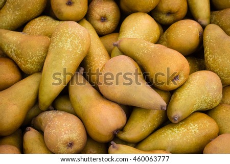 group of pear fruits macro - pile of pears - stock photo