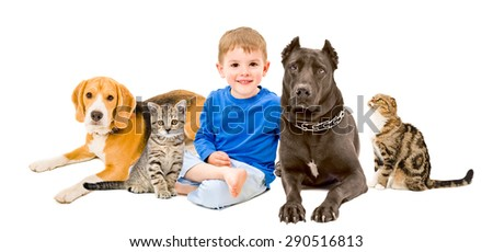 Group of pets and happy child together isolated on white background - stock photo